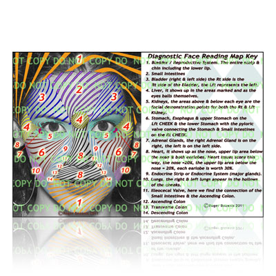 Diagnostic Face Reading Map Key